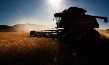 Indústria prevê alta de 10% na venda de máquinas agrícolas em 2020. Foto: © CNA/ Wenderson Araujo/Trlux Internacional